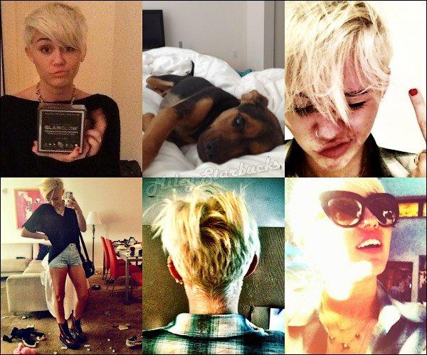 16/08  Miley en voiture dans les rues de Philadelphie