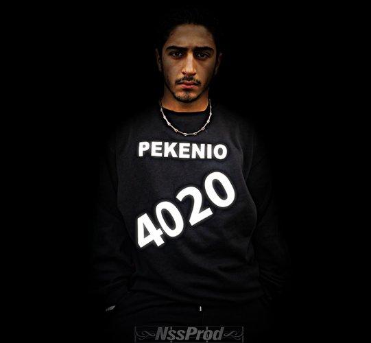 PEKENIO 4020