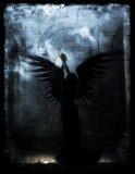 Photo de chroniques-des-anges