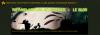 Le Blog sur le site Rayman Pirate-Community