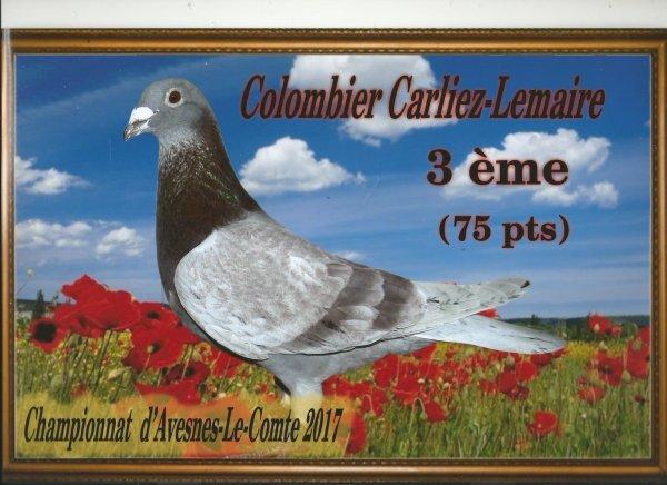 COLOMBIER CARLIEZ-LEMAIRE