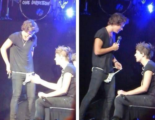 Larry Moments du Take Me Home Tour