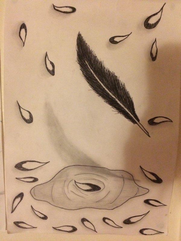 Plume et pétales