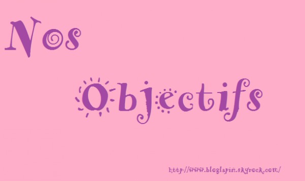 Des nouvelles & des Objectifs! (18/01/2013)