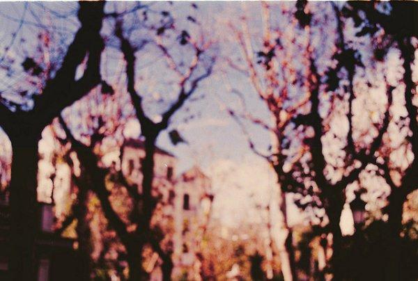 Autumn butterflies ; blog coup de c½ur ♥