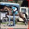 HorseAndLove
