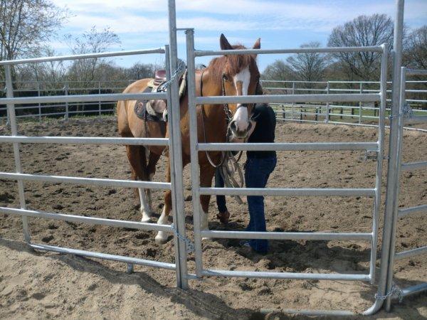 Mon cour d'equitation
