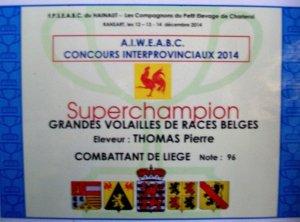 CONCOURS INTER PROVINCIAUX  2014 à RANSART  ( serres de la ville de Charleroi ) .