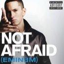 Not afraid de Eminem sur Skyrock