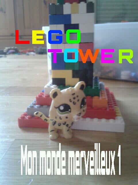 Lego tower et mon jaguar
