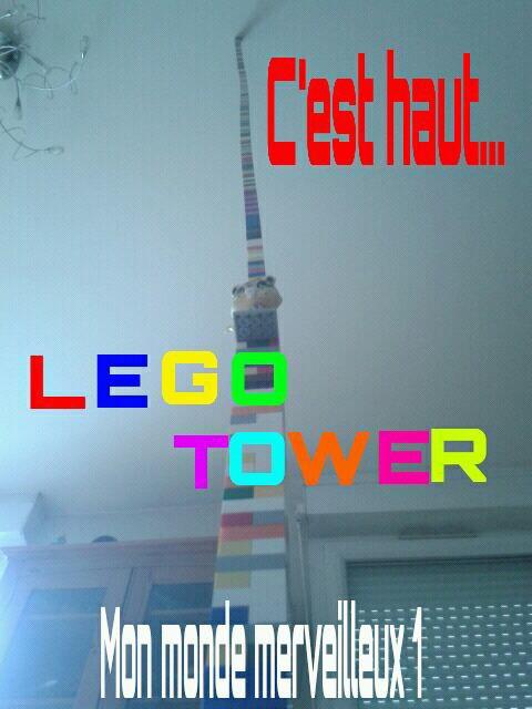 Lego tower et mon petshop