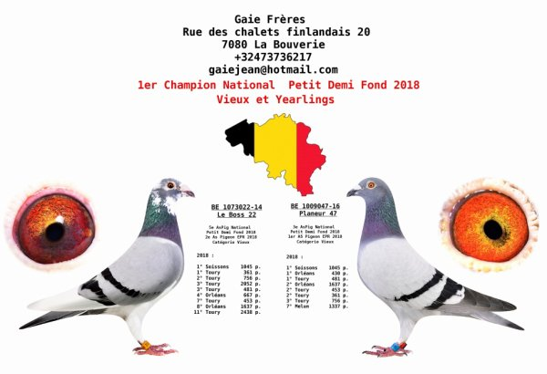 1° CHAMPION NATIONAL RFCB DEMI FOND 2018 JEAN GAIE