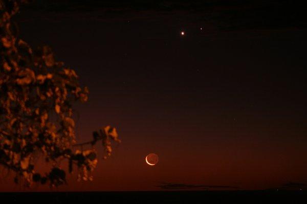 (353) Lune Venus Mars