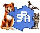 Photo de soufrance-animaux