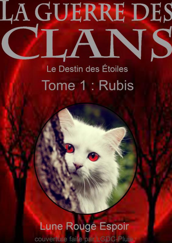 Le Destin des Étoiles, tome 2: Rubis