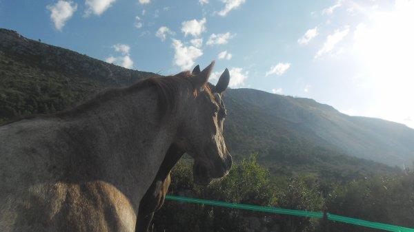 Nos 1ere Vacances à cheval - Bargeme