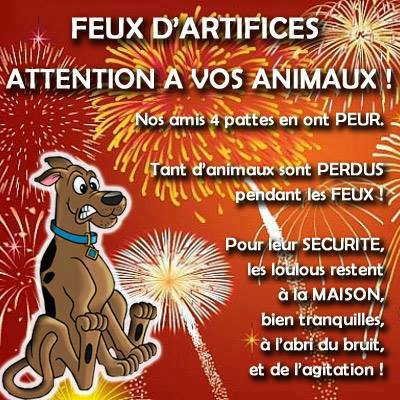 ATTENTION A VOS CHIENS  DURANT LA PERIODE DES FEUX D'ARTIFICES ...