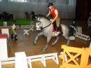 Photo de schleich--chevaux