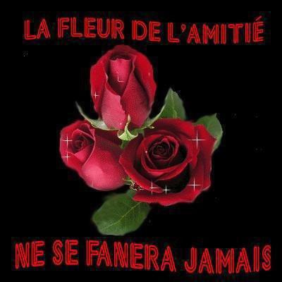 MES FLEURS DE L AMITIER PRENEZ LES