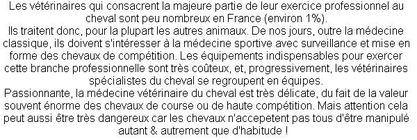 Métier : Vétérinaire équin.
