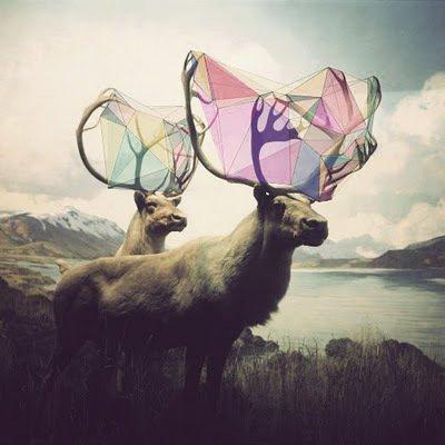 Spann dir ein Netz aus Fantasie. It would be fabulous!