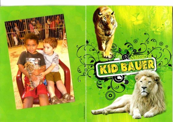 Bagatelle 2011