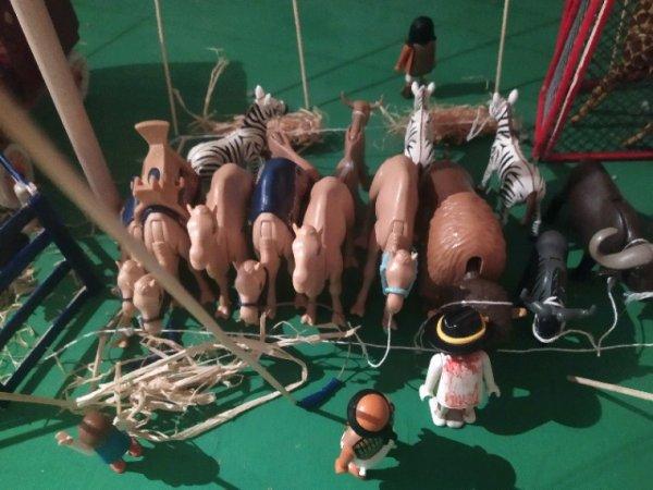 Hobald circus ménagerie