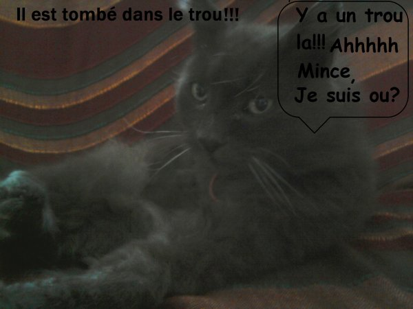Attention au trou !!! ^^ photo