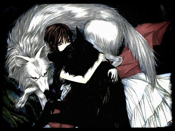 New manga a decouvrir ! : Vampire Knigth