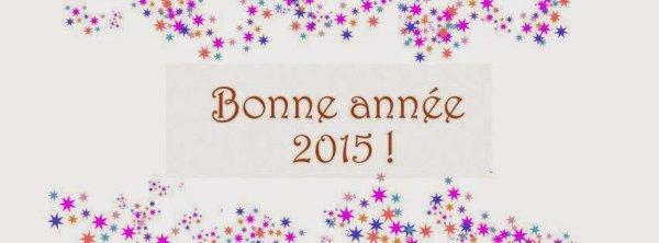 bonne année a tous !!!! meilleurs voeux