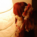 Photo de Orangine-Pullip