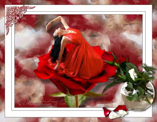 Dance in the Rose