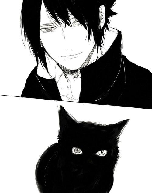 Le chat et Sasuke