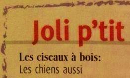 **Cours de Français **,,,, sur le Bois,,,,,