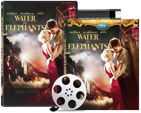 'De l'eau pour les éléphants' en DVD