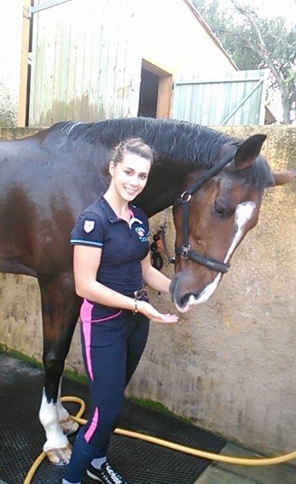Les chevaux pour la vie