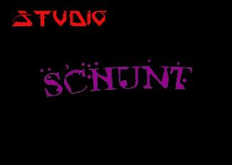 Schunt
