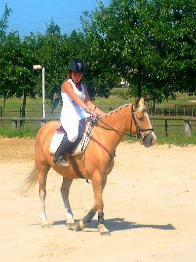 Le seul que j'aime vraiment Plus Que Tout au monde ...  Mon bonheur, ma joie de vivre il est mon tout il me rend Heureuse, L'amour entre un être humain et un cheval ne s'explique pas. <3
