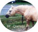 Photo de Mr--Quendjii-x3