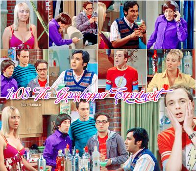 The Big Bang Theory -------------- Saison 1, Episode 8 : The Grasshopper Experiment------------------ Voir l'épisode