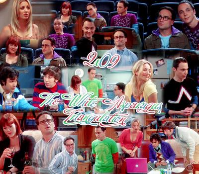 The Big Bang Theory----------- Saison 2, Episode 9 : The White Asparagus Triangulation-----------Voir l'épisode