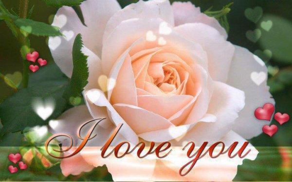 triste sans toi   je t aime.......