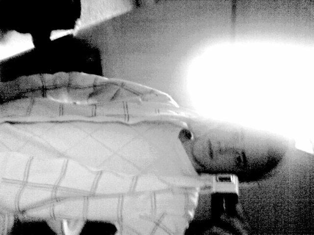 ● Тснєєк тснєєк мєк ‼ Вієи оц вієи ‽ Нєу лzі ғцск, тялсє тл яоцтє !! Ѕі² Tкт ₂₂ єи ғоясє ●