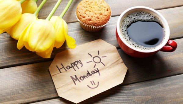 Bon lundi à tous !
