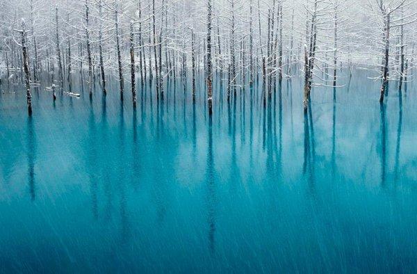 Le lac Blue Pond au Japon