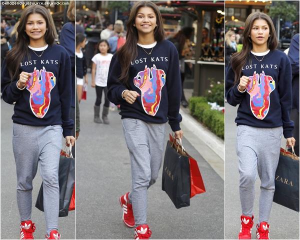 Zendaya faisant du shopping avec son amie a Los Angeles le 10 novembre. Un flop..