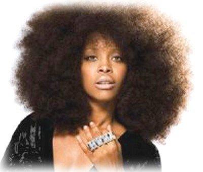 Côté Coiffure : l'afro