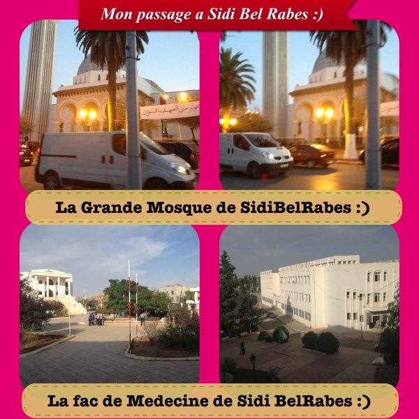 Mon voyage en Algerie#1