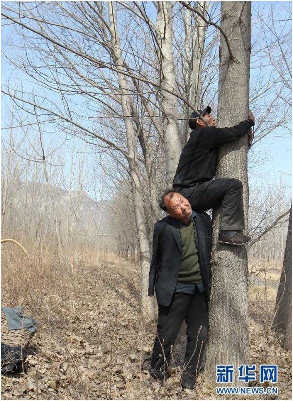 Haixia et Wenqui sont deux amis qui ont réussi l'exploit de planter pas moins de 10 000 arbres en 10 ans pour éviter que leur village soit inondé. Pourtant, ces compères souffrent de deux handicaps qui auraient pu les freiner dans leur projet. En effet, l'un est aveugle et l'autre a perdu l'usage de ses bras. Malgré leurs infirmités, les deux amis ont réuni les forces de chacun et ont réussi à faire de belles et grandes choses. Une jolie leçon de vie que SooCurious vous fait découvrir en images. Haixia et Wenqui sont deux amis qui vivent à Yeli, un petit village en Chine du Nord