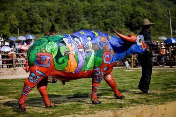 Un festival international de peinture sur taureau en Chine